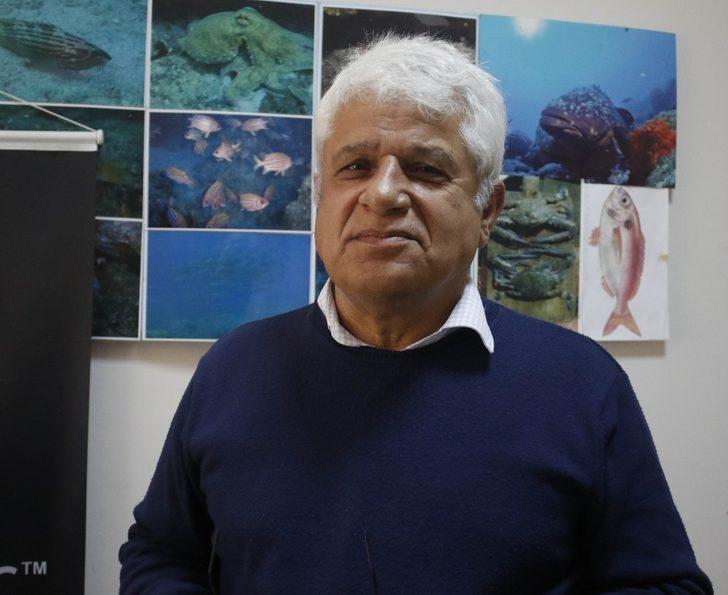 Akdenizin işgalci balıkları su altında görüntülendi