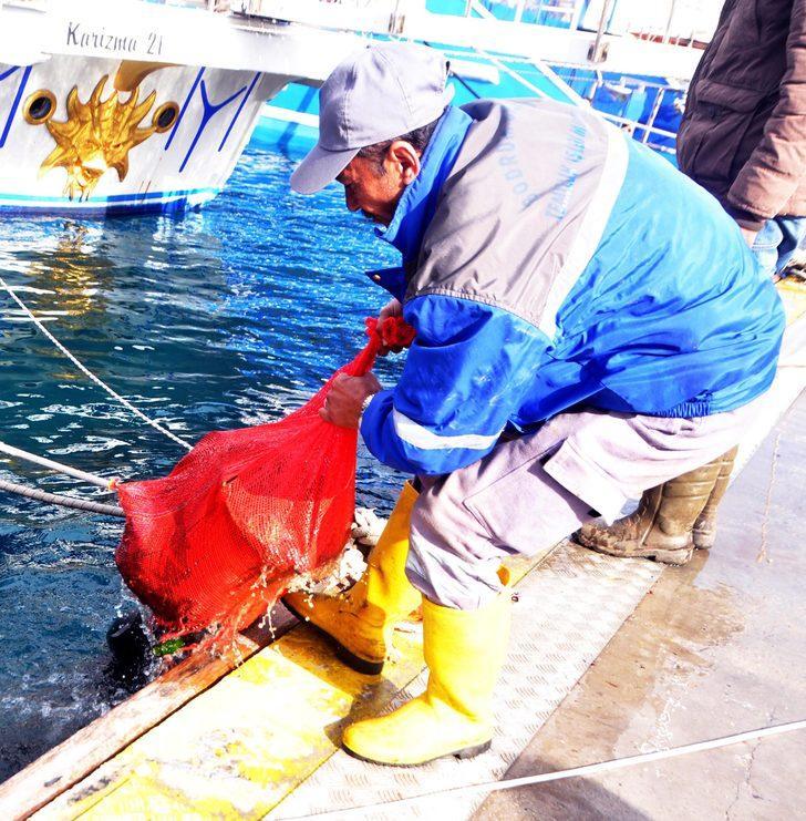 Gümbet'te dalgıçlar 615 kilo atık çıkardıkları denizden Afrin mesajı verdi