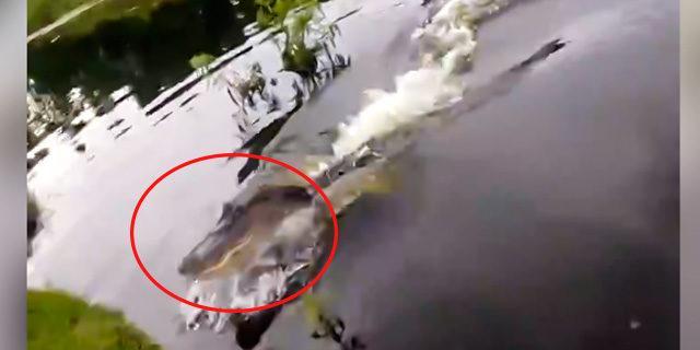 Balık tutan adam şoke oldu!