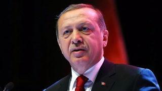 Erdoğan, öldürülen terörist sayısını açıkladı