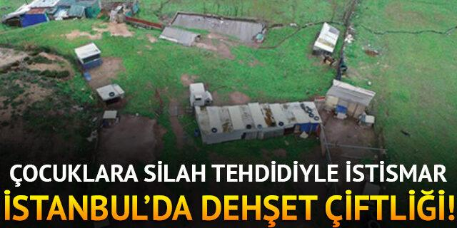 İstanbul'da dehşet çiftliği!