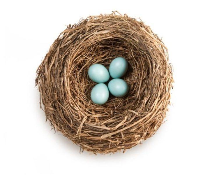 Yumurtaların farklı renklerde olmasının nedeni nedir?