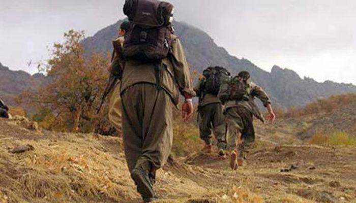 PKK'nın 30 yıllık hayali suya düştü