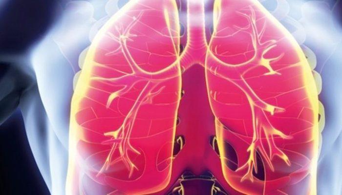 Tüberküloz sadece akciğerlerde görülmüyor