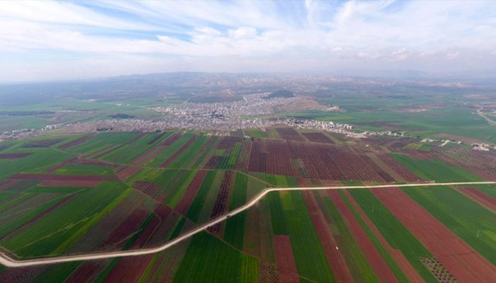 Zeytin Dalı Harekâtında neler yaşanıyor? TSK'dan son dakika Afrin açıklaması
