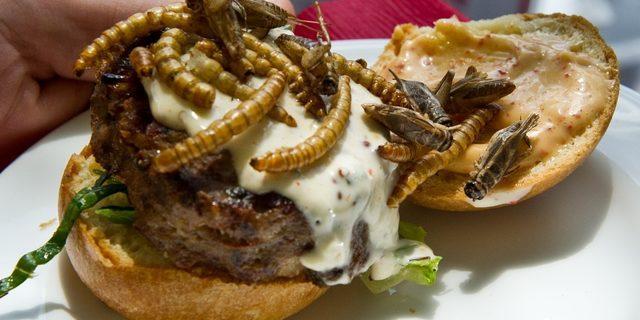 Herkesin hayatına kimse karışamaz: İçinde böcek bulunan burgere talep büyük