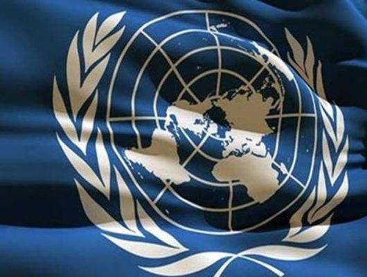 Birleşmiş Milletler'den Türkiye'ye 'OHAL bitsin' çağrısı
