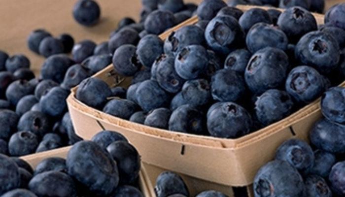 Yüzyılın meyvesi: Maviyemiş