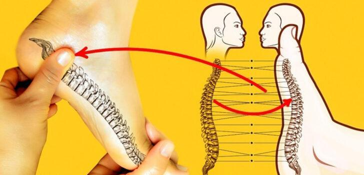 Ayak refleksolojisiyle omurga ağrısı rahatlaması