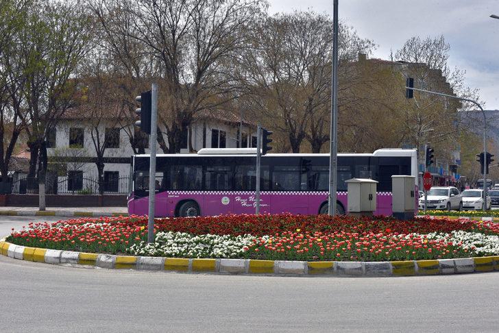 Turhal'da park ve bahçelere 350 bin çiçek dikildi