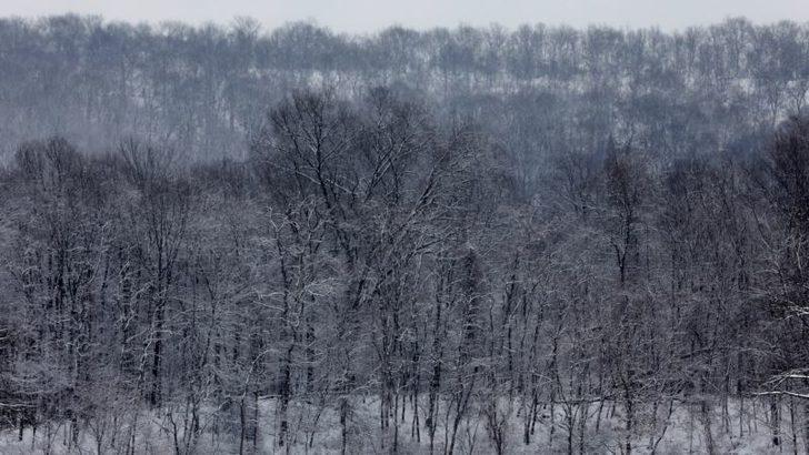 Amerika'nın Bazı Bölgelerinde Sert Hava Koşulları Etkili
