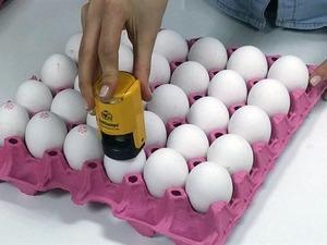 Bugün başladı! Yumurta alırken buna dikkat!