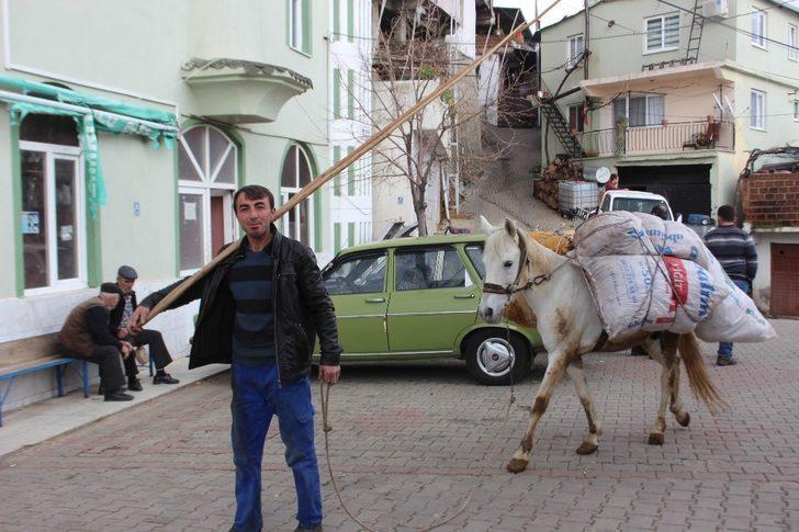 Akaryakıt zamlarından sonra at ve eşekler yeniden kıymete bindi