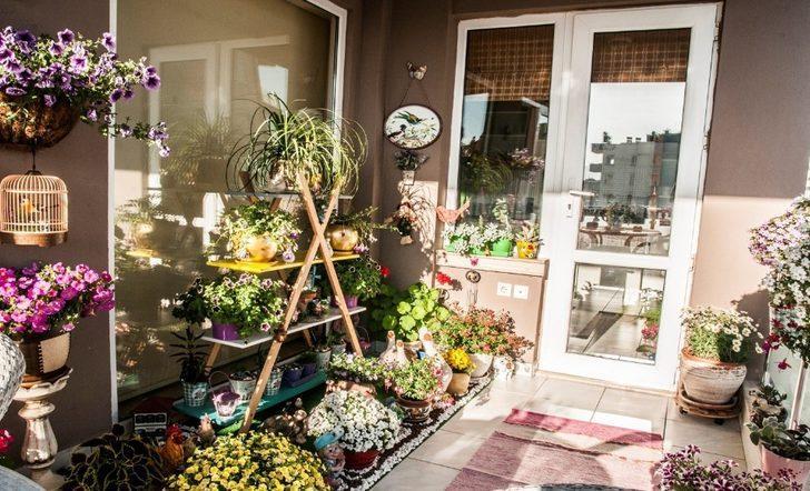 En güzel bahçe ve balkon için geri sayım başladı