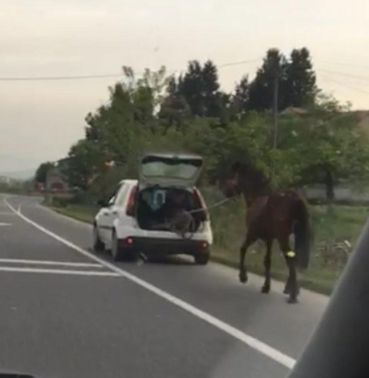 Atı otomobiline bağlayıp koşturdu