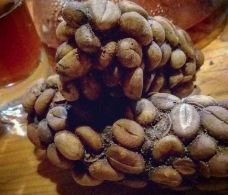Kopi Luwak: Misk Kedisi'nin sindirim sisteminden geçen bu kahve, Asya'da bolca seviliyor.