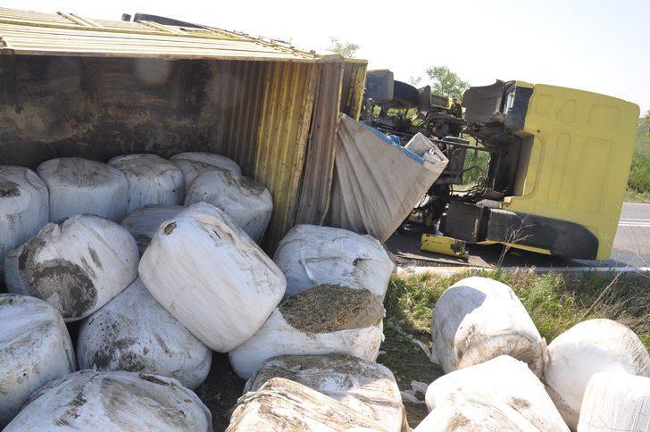 TIR devrildi, 25 ton mısır silajı tarlaya saçıldı
