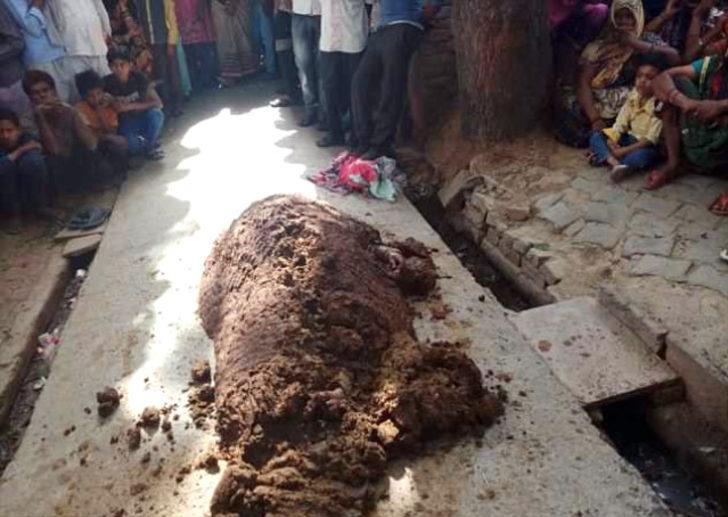 Hindistan'da yılan tarafından sokulan kadını doktora götürmek yerine hayvan dışkısına gömdüler!