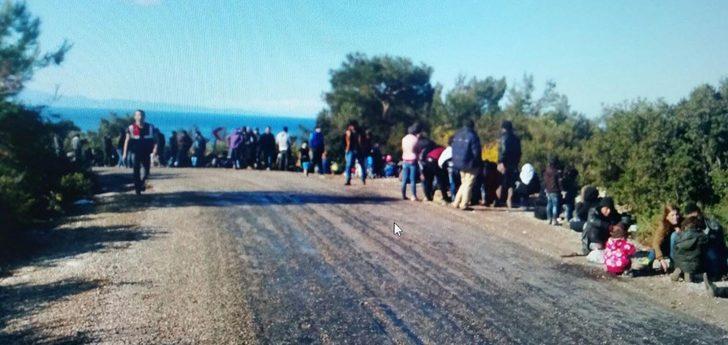 İzmir'de 316 göçmen yakalandı