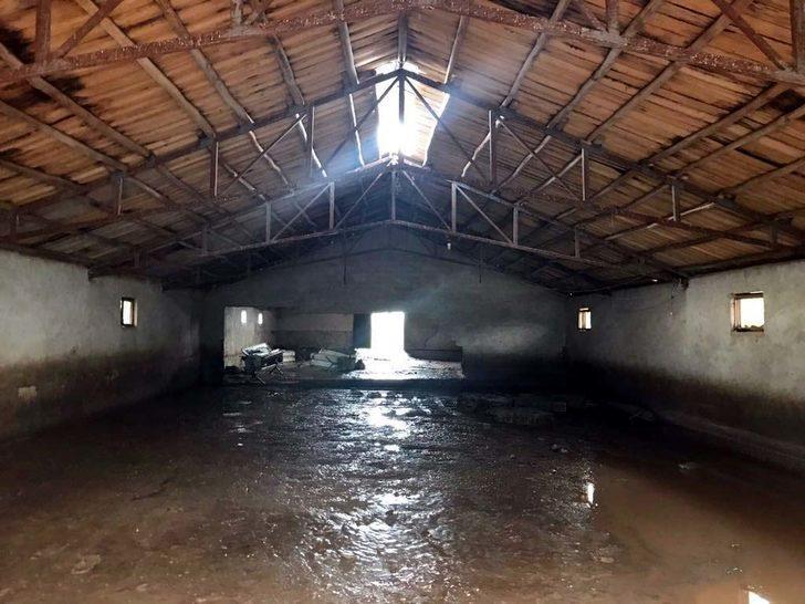 Elazığ'da sel: 25 küçükbaş telef oldu