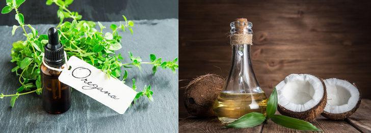 Kekik yağı ve hindistancevizi yağı