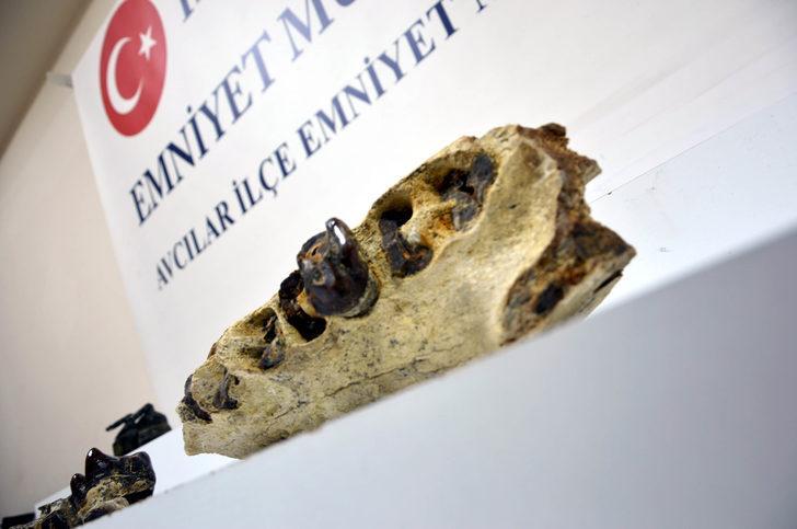 Eve yapılan operasyonda dinazora ait ait çene kemiği fosili ele geçirildi