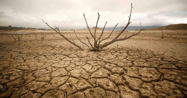 2030 için kritik uyarı: Açlıktan kıvranacaklar