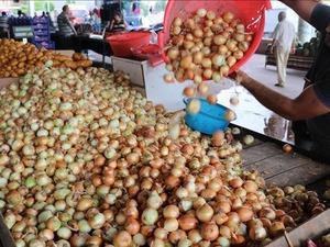 Soğanın fiyatı yine artışta! Kilosu 10 lirayı bulabilir