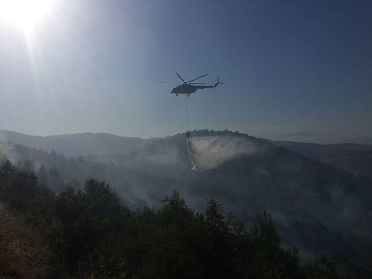 Anız yangını ormana sıçradı (2)
