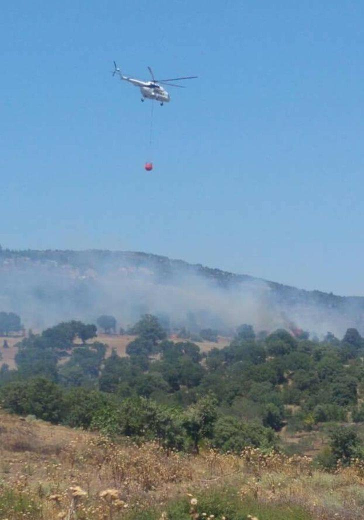 Tarım arazisinde çıkan yangın ormanı da yaktı