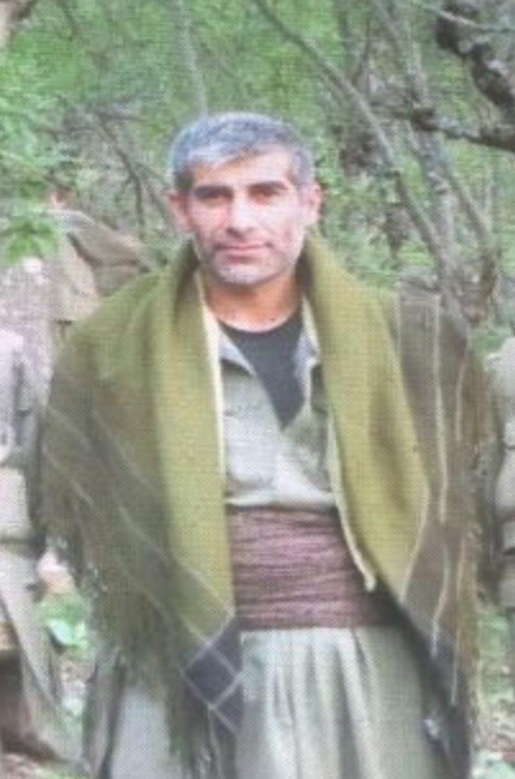 Kırmızı listeki PKK'lı terörist, Bitlis'te öldürüldü