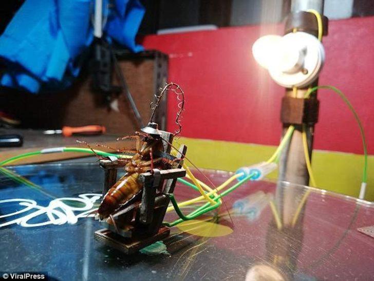 Hamam böceğini elektrikli sandalyede idam eden heykeltıraş tutuklandı