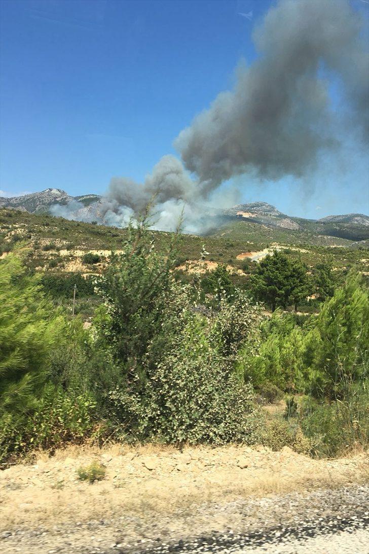 GÜNCELLEME - Mersin'de orman yangını