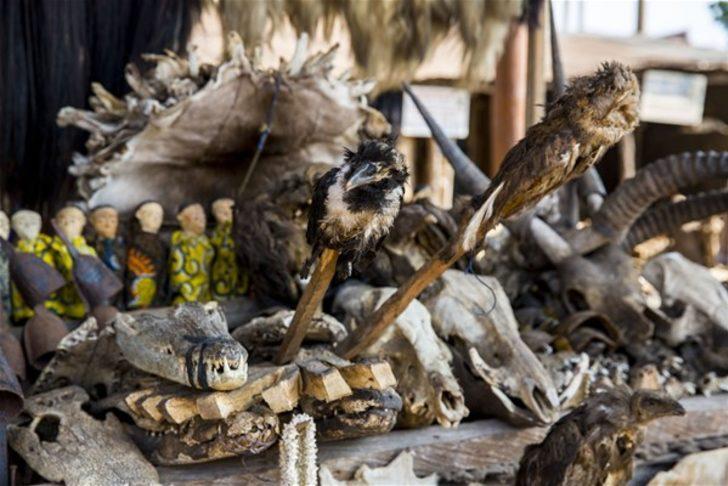 Dünyanın en korkunç pazarı: Akodessewa