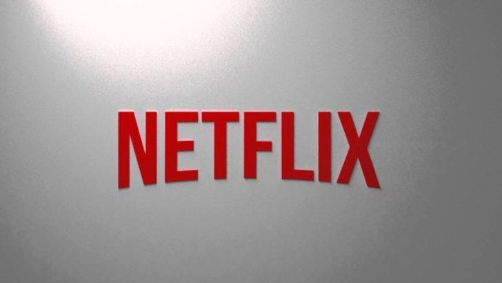 Netflix'in toplam abone sayısı ne kadar?