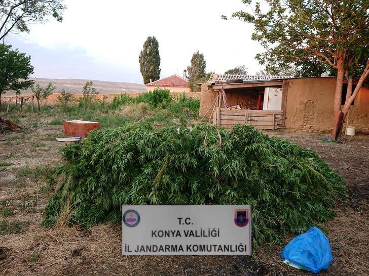 Konya'da jandarmadan uyuşturucu operasyonu