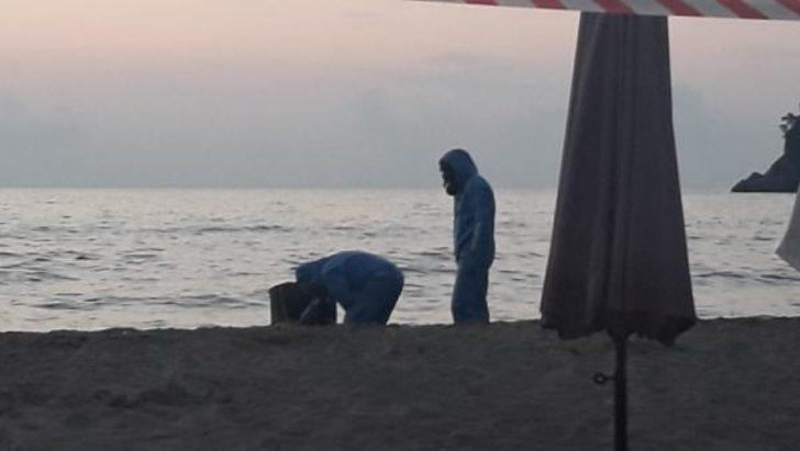 Bartın'da sahile vurdu! Ekipler teyakkuza geçti
