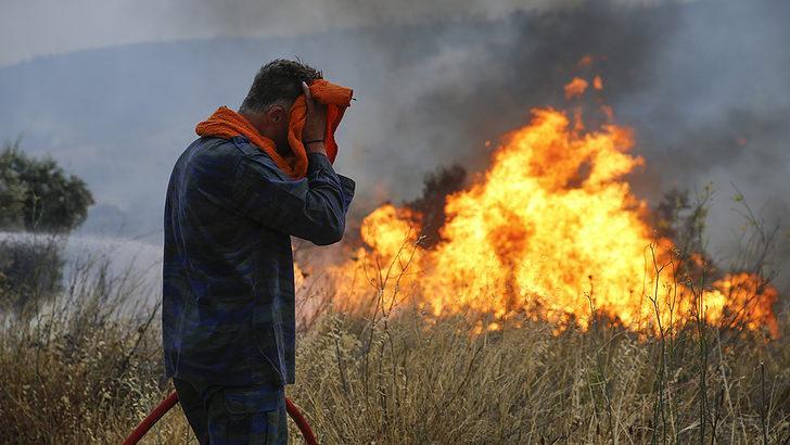 Yunanistan felaketi yaşıyor! Ölü sayısı 74'e yükseldi