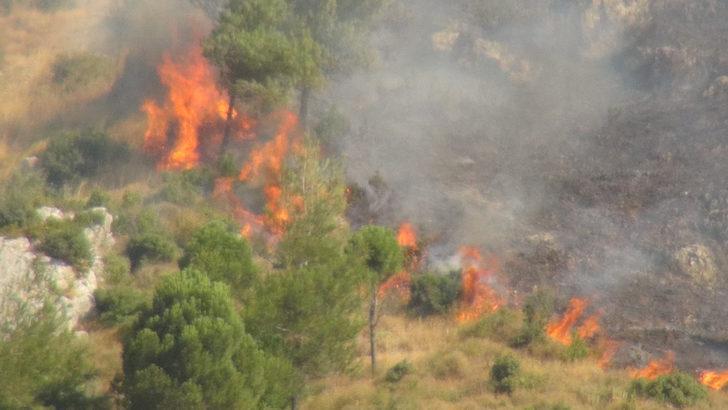 Hatay'da Habib-i Neccar Dağı'nda makilik alanda yangın (2)