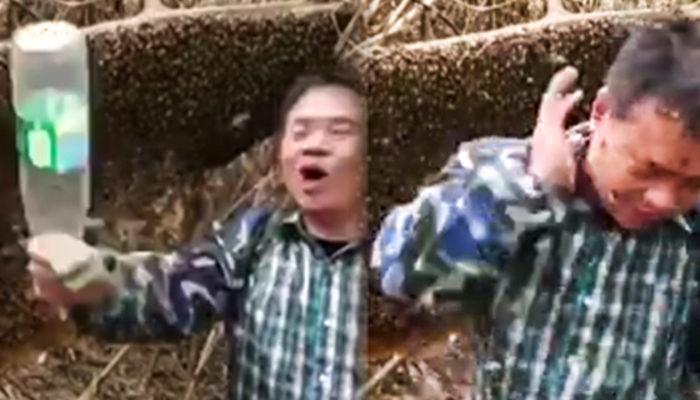 Arılarla oynayan adam dersini feci şekilde aldı
