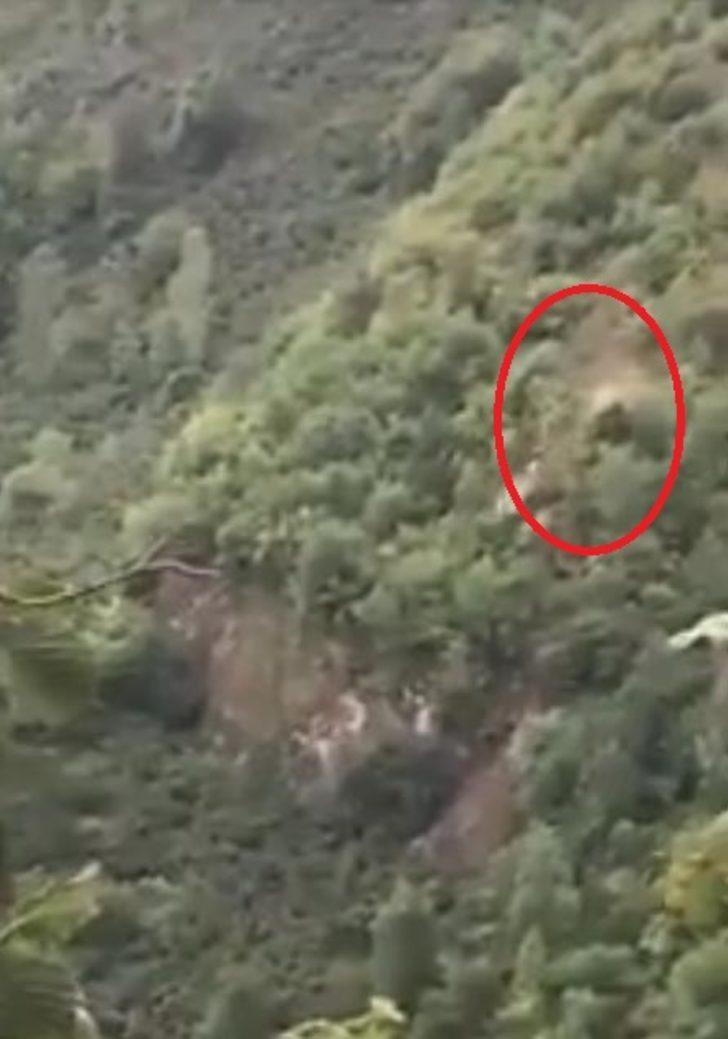Hafif ticari araç uçurumdan yuvarlandı: 3 yaralı