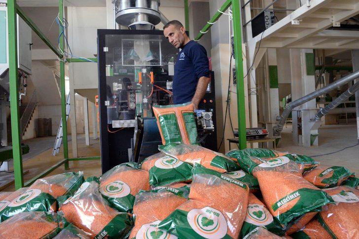 Diyarbakır, kırmızı mercimek ve ipek böcekçiliği üretiminde birinci