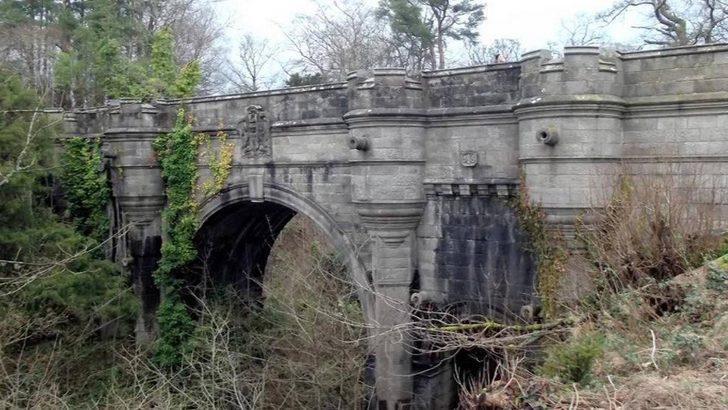 Image result for bu köprüye giden köpekler intihar ediyo
