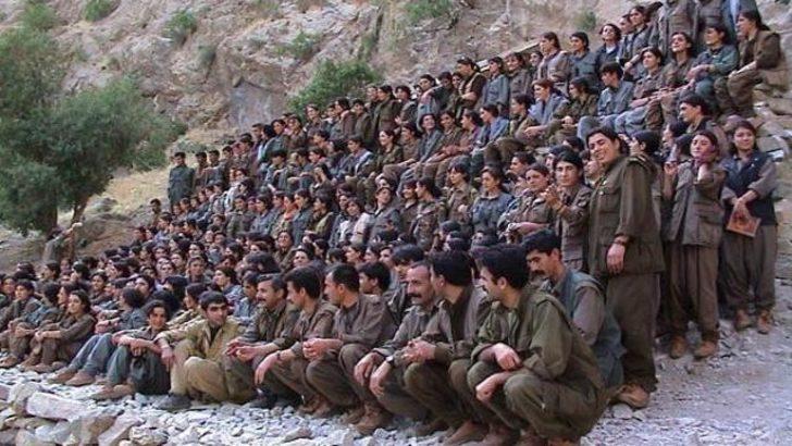 Bin PKK sempatizanıyla anketten ne çıktı?