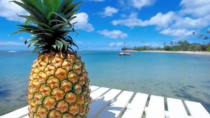 Ananas suyunun faydası