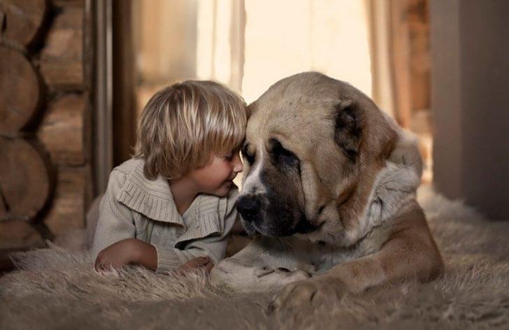 Çocuklar ile hayvanlar arasındaki muhteşem sevgiyi anlatan 20 görsel