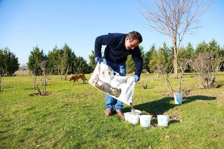 Başakşehir'de Soğuk Havada Sokak Hayvanları Unutulmadı