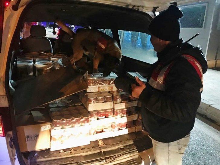 Jandarma Dedektör Köpekler İş Başında