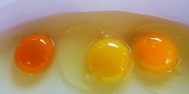 Sizce bu yumurtalardan hangisi sağlıklı bir tavuğa ait?