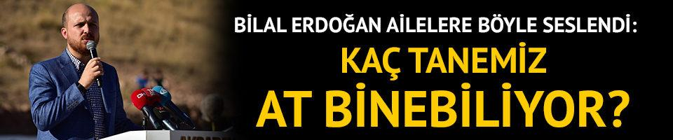 Bilal Erdoğan: Kaç tanemiz at binebiliyor?